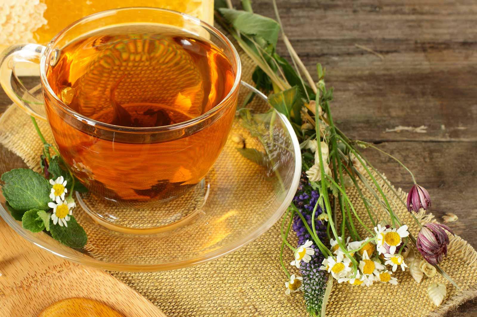 Чай из календулы: целебные свойства, показания к применению