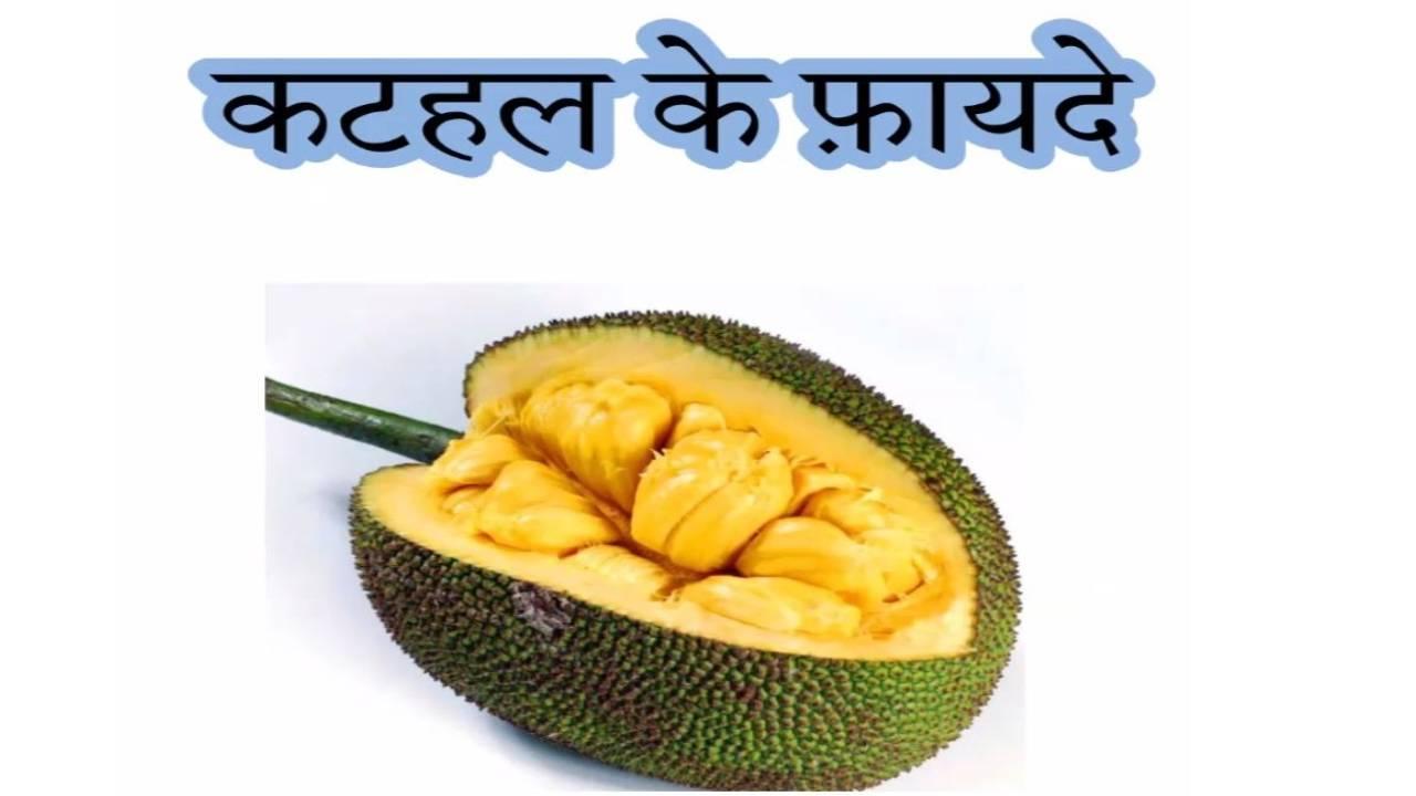 Калорийность джекфрут в сиропе [aroy-d]. химический состав и пищевая ценность.