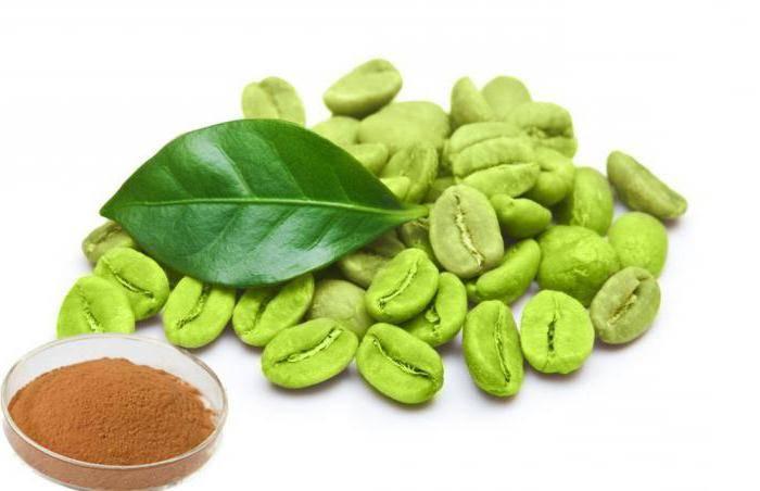 Зеленый кофе – польза и особенности употребления