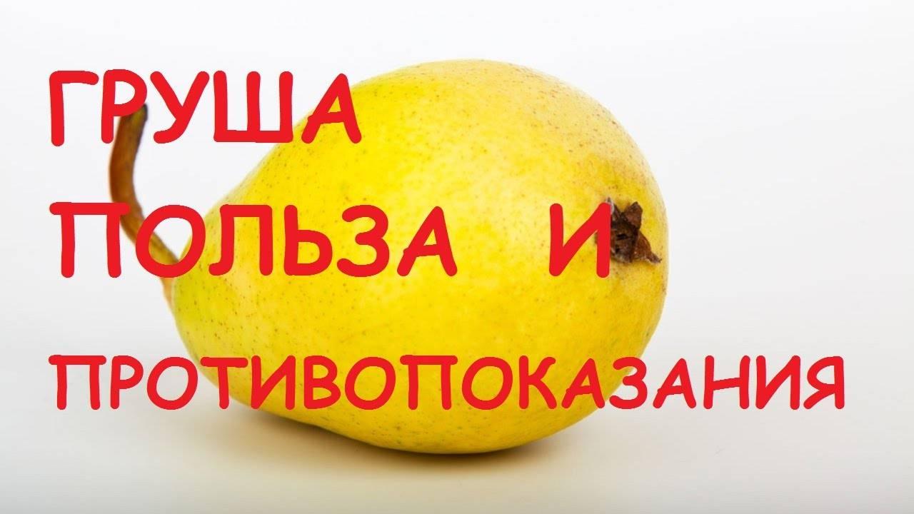 Чем полезна груша, и как правильно употреблять любимый с детства фрукт