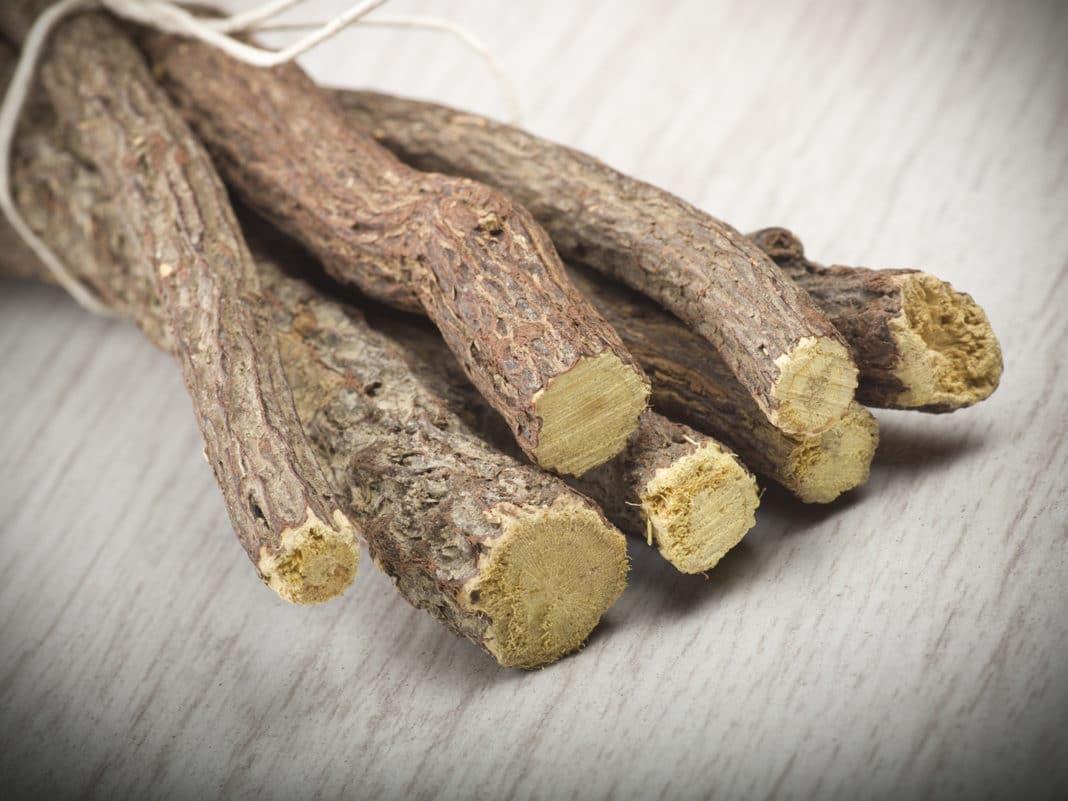 Солодка голая – лечебные свойства и противопоказания