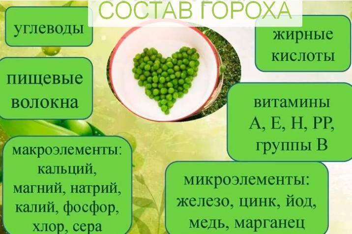 Горох, польза и вред для здоровья человека