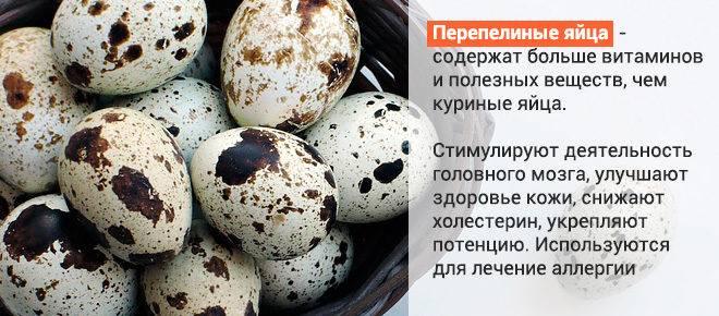 Можно ли пить сырые яйца? влияние на мужской и женский организм, правила употребления