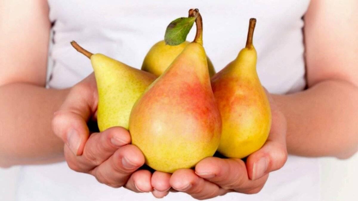 Употребление груш при грудном вскармливании — можно ли и в каком виде?