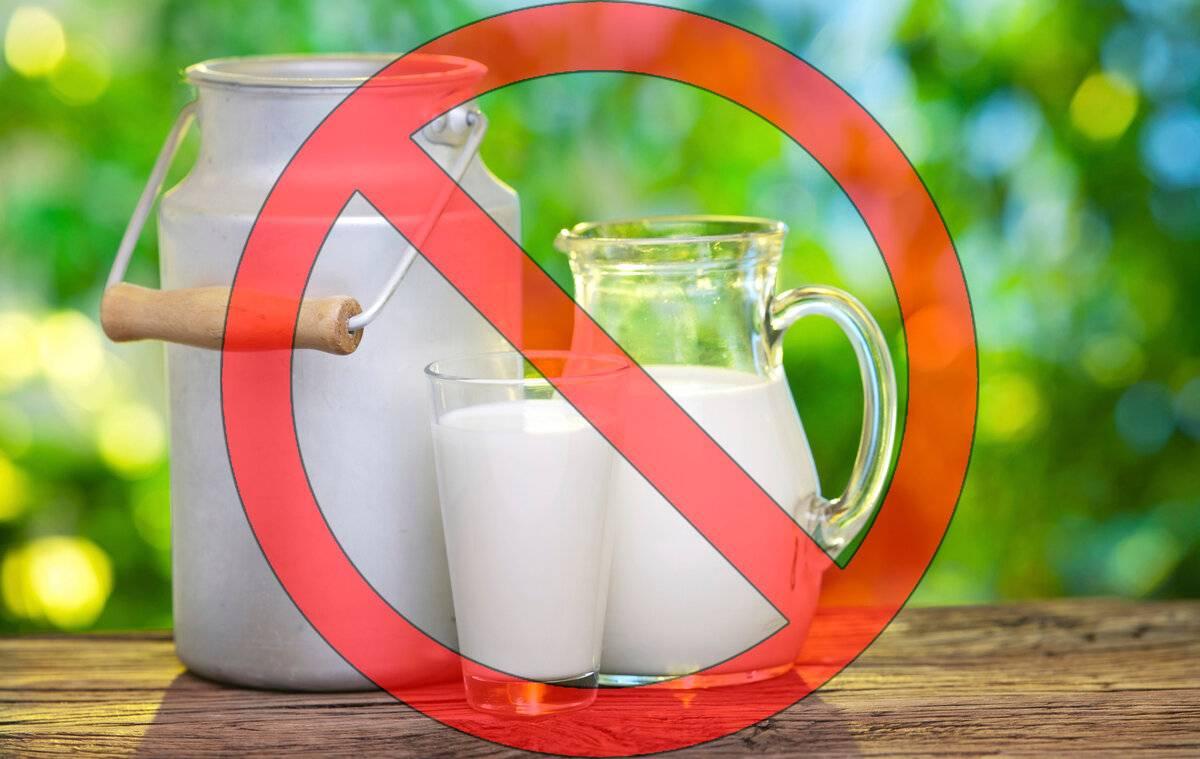 Сухое молоко — польза, вред и состав сухого молока