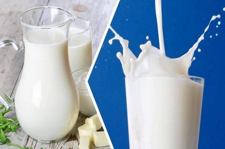Какая польза у миндального молока и есть ли у него вред? состав, применение и приготовление продукта