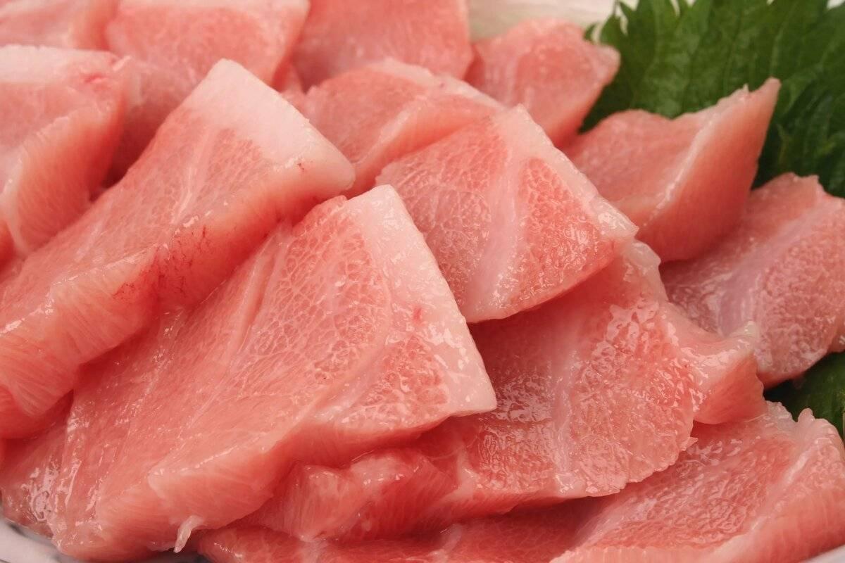 Тунец: польза для организма, калорийность и возможные противопоказания
