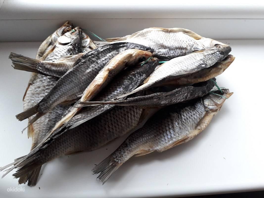 Сушеная рыба – калорийность и виды. польза и вред сушеной рыбы