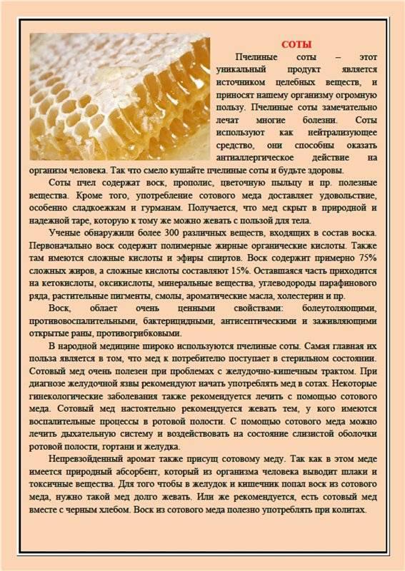 Мед в сотах, польза и вред. пчелиные соты