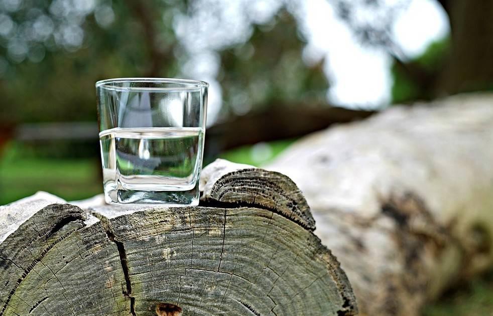 Березовый сок польза и противопоказания