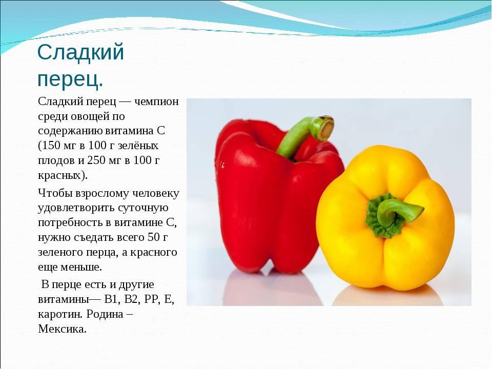 Болгарский перец: польза и вред