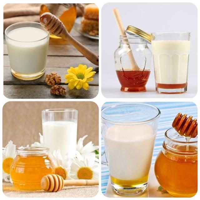 Топленое молоко: состав, польза и вред, отличия от коровьего