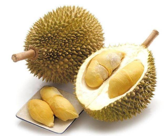 Польза и вред дуриана для организма. где растет дуриан