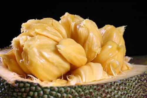 Джекфрут – полезные свойства плодов-гигантов