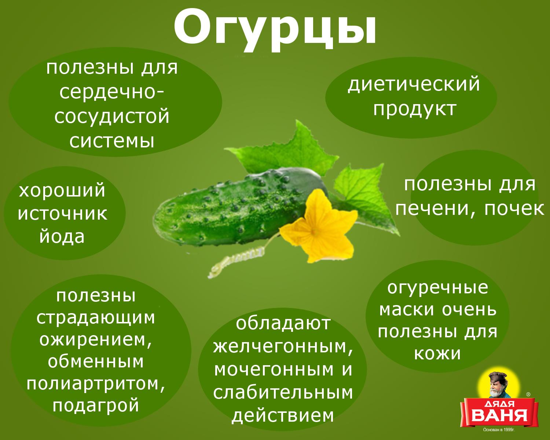 Какой овощ полезнее огурец или помидор?