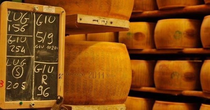 В чем польза и вред сыра для организма человека?