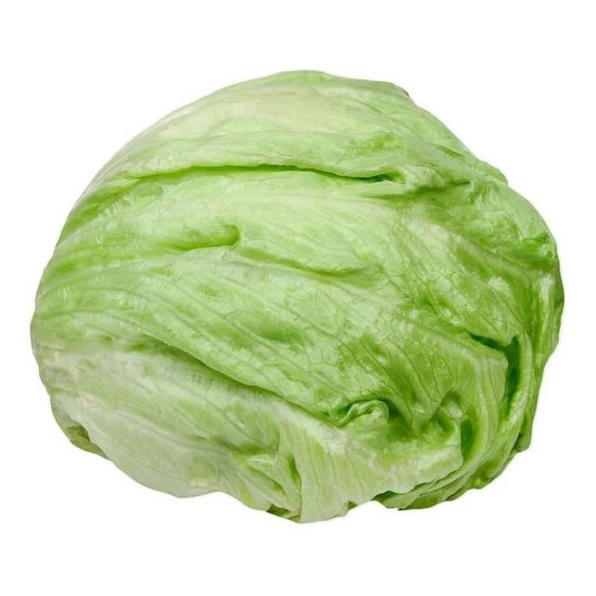 Польза салата айсберг: свойства овоща, состав, употребление и вред для организма (110 фото + видео)