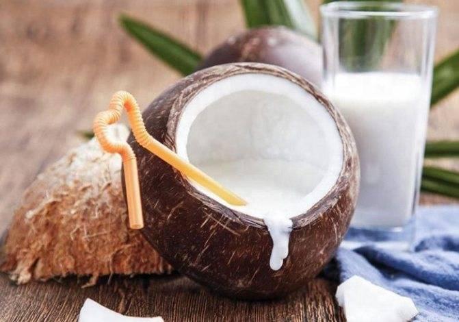 Чем полезно кокосовое молоко и как его пить