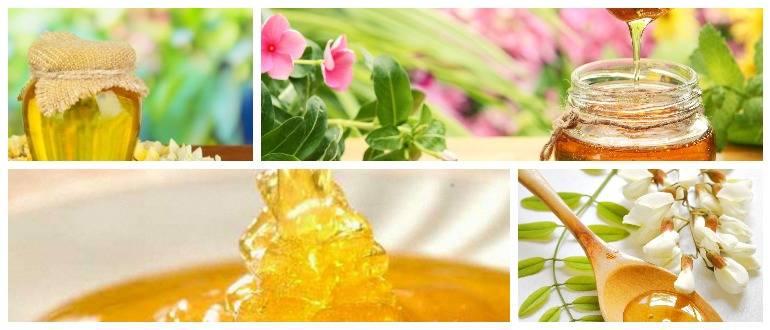 Свойства майского мёда