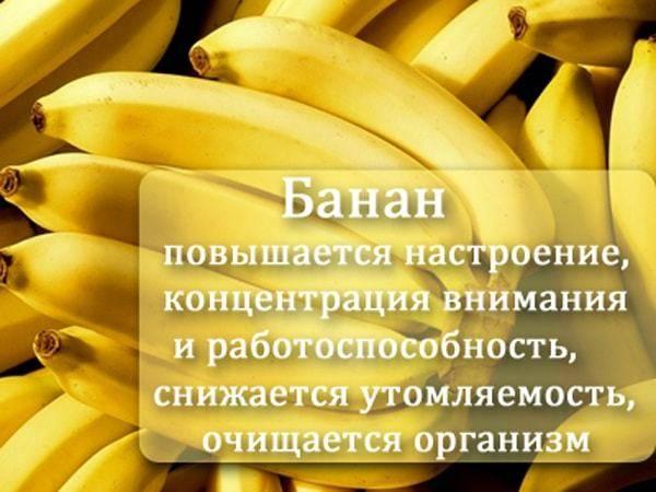 Бананы в питании кормящей мамы: польза или вред?