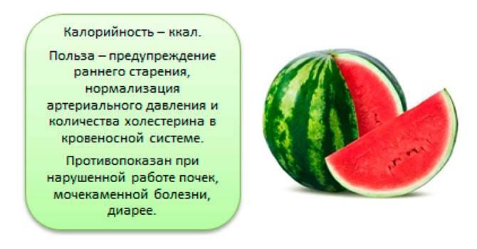 Польза арбуза для организма человека. какая польза от арбуза