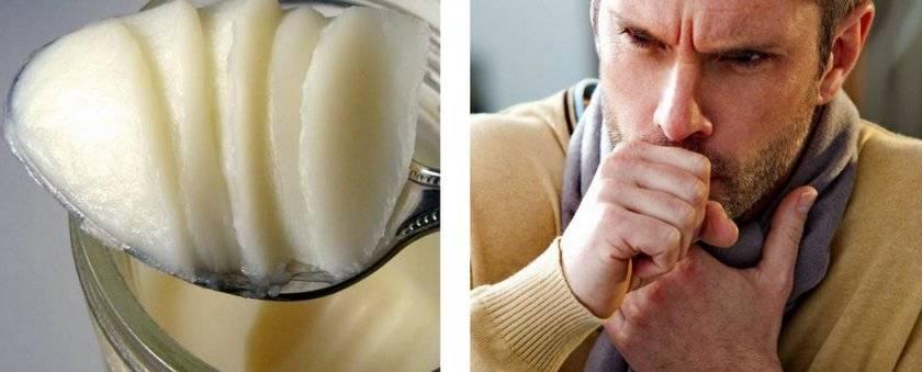 Гусиный жир. лечебные свойства, польза, рецепты для здоровья детей, мужчин и женщин
