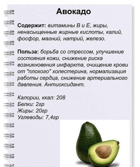 Полезные свойства ягод: противопоказания, польза и вред