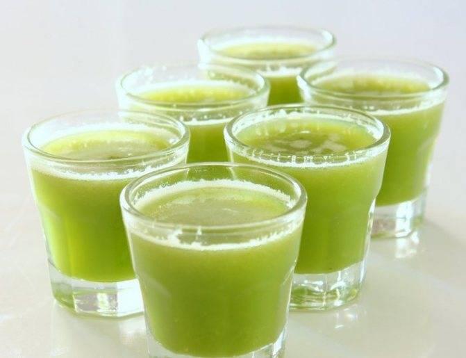 Наслаждаемся вкусом и укрепляем иммунитет: огуречный сок — какова польза и в чем вред целебного напитка?