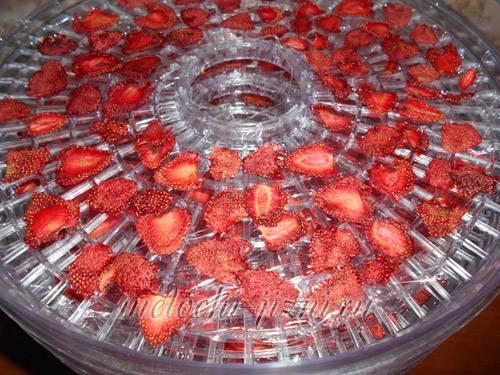 Сушёная клубника в домашних условиях – 4 рецепта