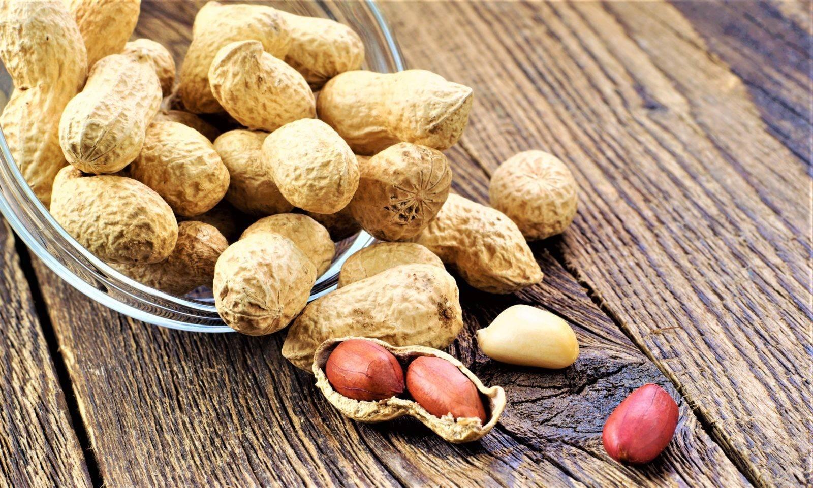 Арахис. польза и вред для организма, сколько нужно съесть