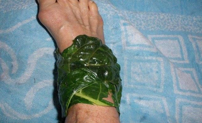Капустный лист лечебные свойства при раке