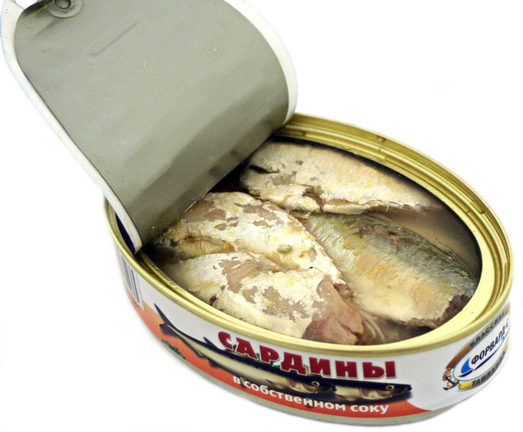 Полезные свойства сардины для здоровья людей и противопоказания. сардина: польза и вред, калорийность, пищевая ценность сардина жирная рыба или нет