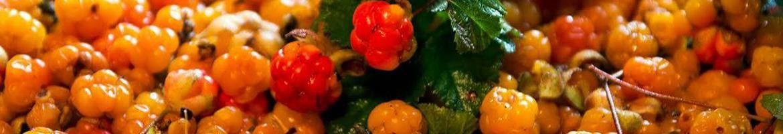 Состав ягоды морошки