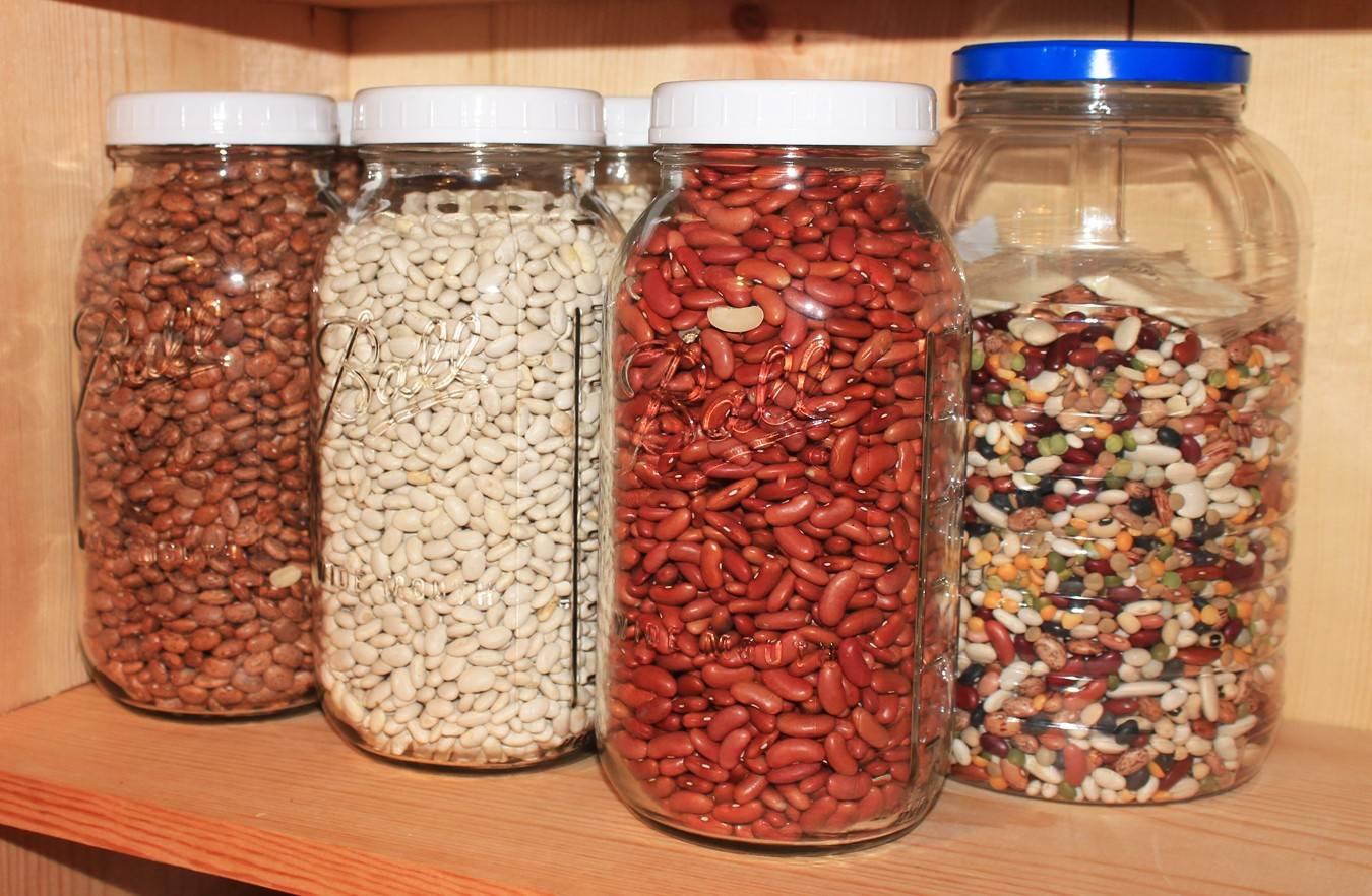 Как быстро и правильно прорастить фасоль в домашних условиях за 1 день