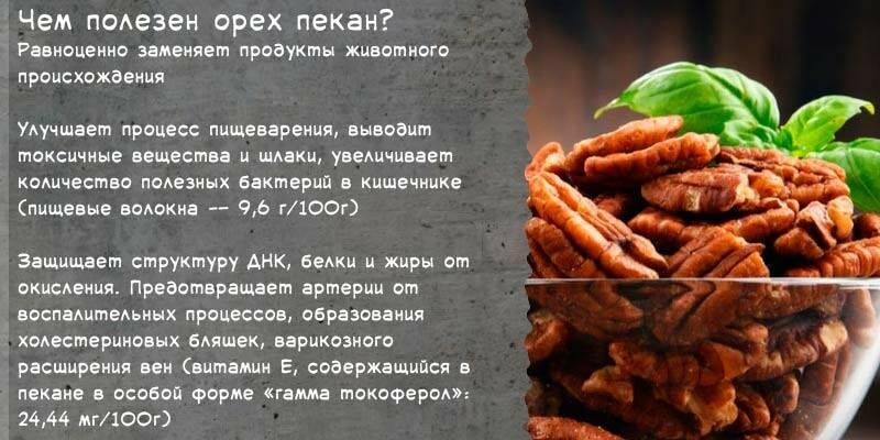 Суперполезный продукт – орех пекан. какими лечебными свойствами обладает и с какого возраста можно давать его детям?
