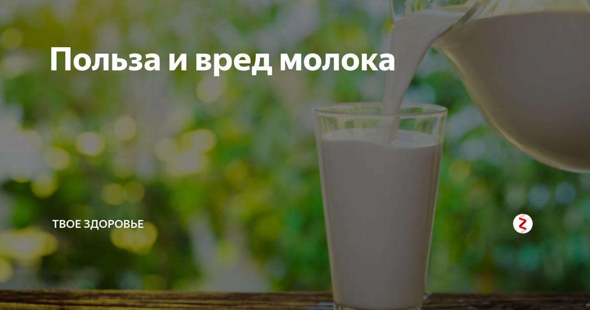 Польза, вред, калорийность конфет птичье молоко на 100 грамм, в 1 шт.