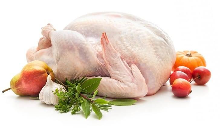 Польза и вред мяса индейки, важные свойства индюшатины