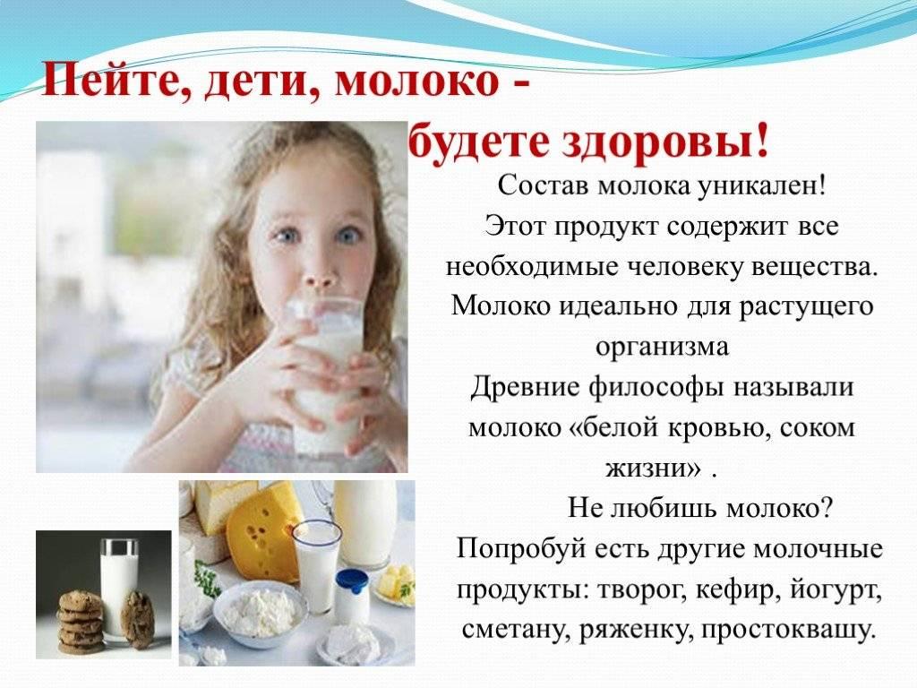 Молочные продукты — польза или вред?