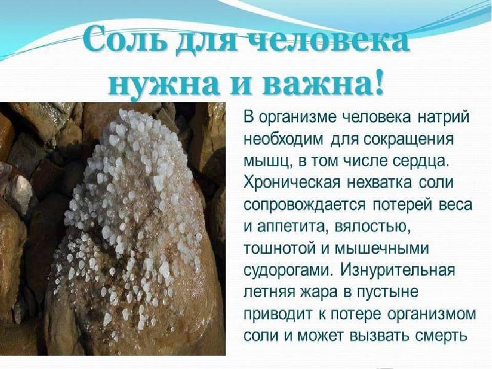 Обзор научных исследований о влиянии соли на сердце и сосуды