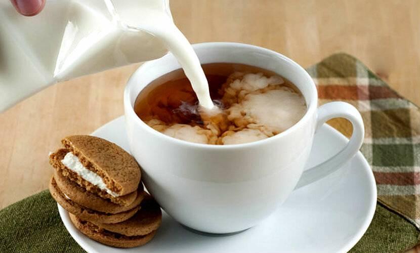 Чай с молоком: польза и вред для организма, свойства и противопоказания