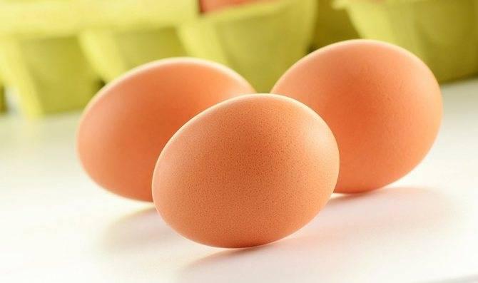 Яичница и омлет при беременности