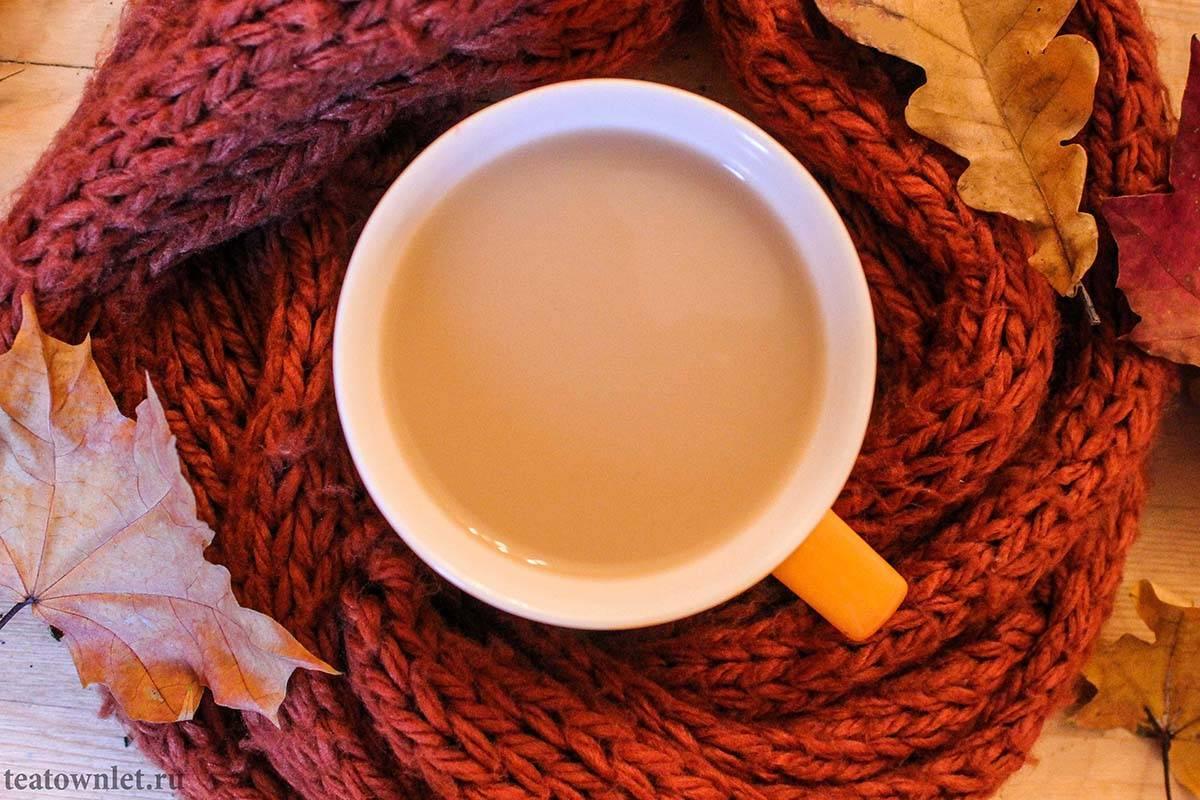 Полезно или вредно пить чай с молоком