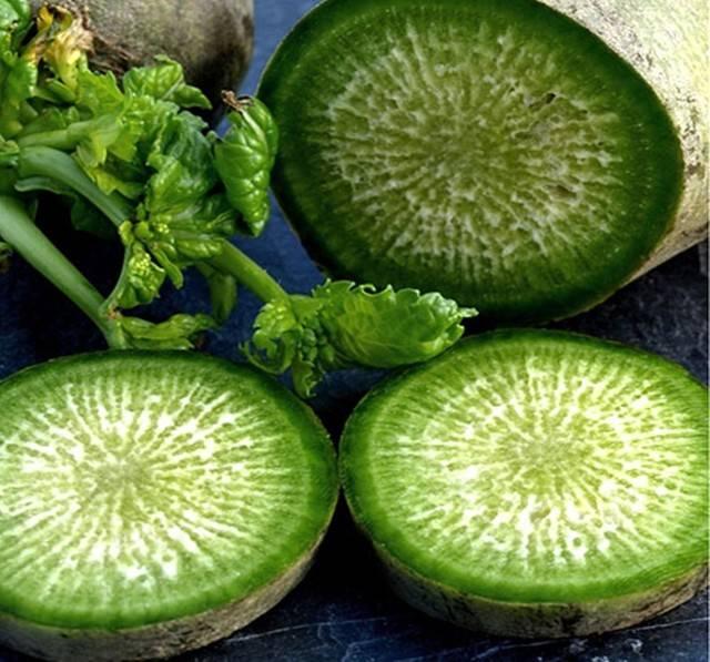 Зеленая редька — полезные свойства и противопоказания, рецепты