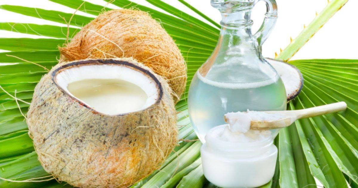 Кокос: польза тропического фрукта
