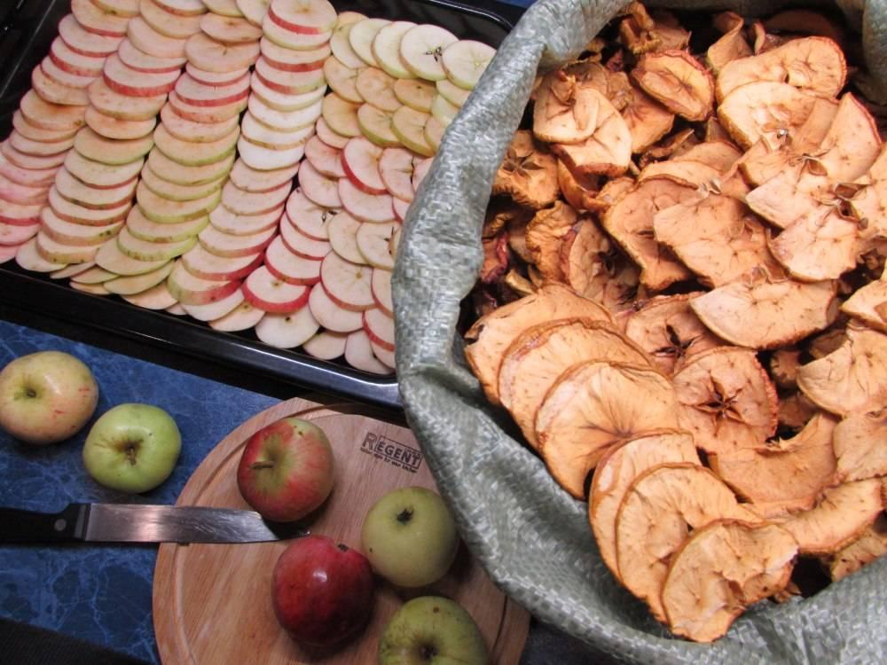 Заготавливаем сушеные яблоки на зиму