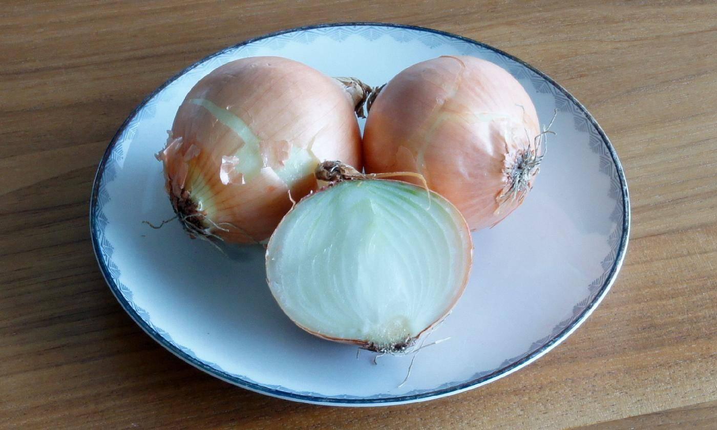Как убрать горечь из репчатого лука для салатов: 5 способов