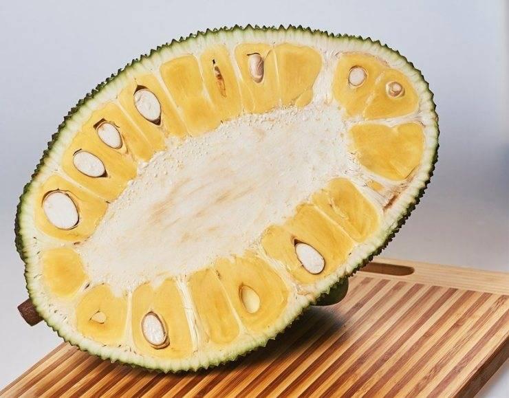 Джекфрут. состав и польза джекфрута. как едят джекфрут