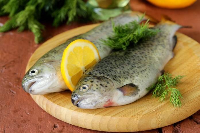 Форель: польза и вред, состав и калорийность