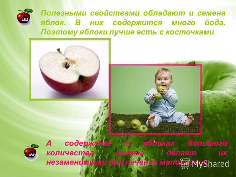Польза семечек яблок для организма