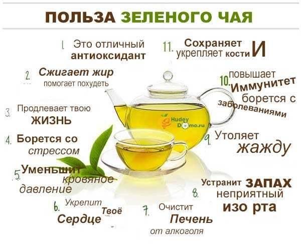 Чай из липы — польза и вред для женщин и мужчин